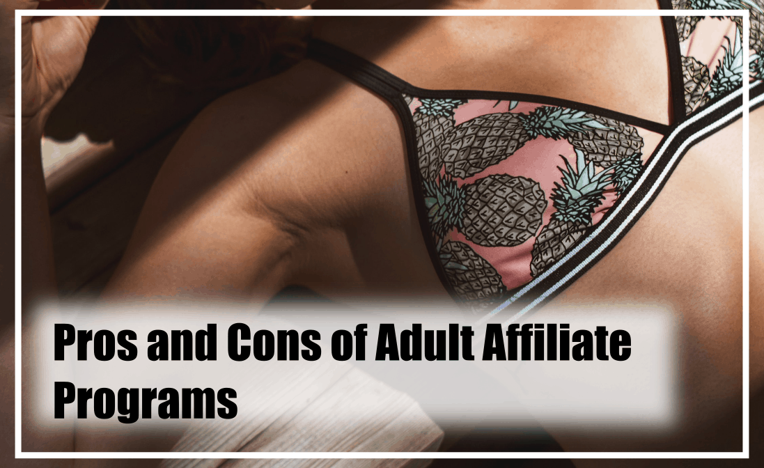 pros and cons of adult affiliate programs.