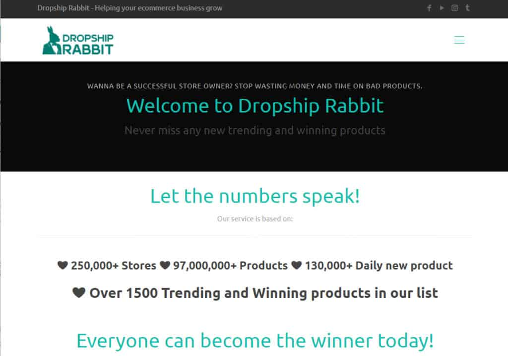 Dropship Rabbit Review